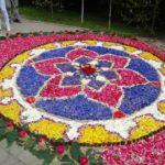 Boże Ciało w Spycimierzu – dywany kwiatowe
